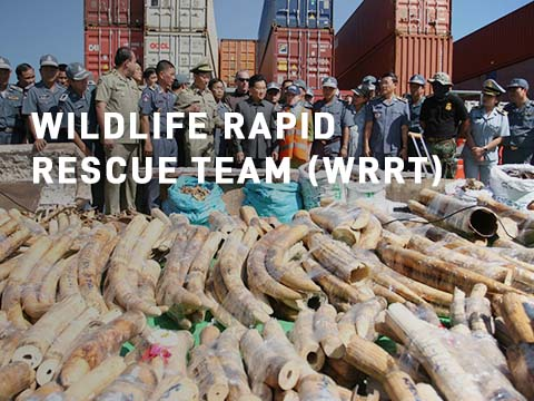 Wildlife Alliance Wildlife Rapid Rescue Team picture