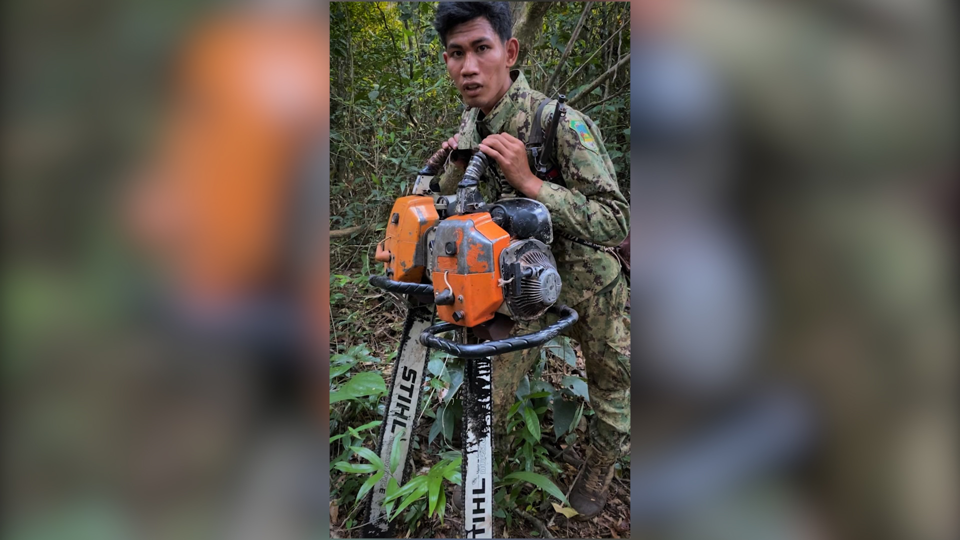 More than 1500 chainsaws are confiscated every year by Wildlife Alliance rangers