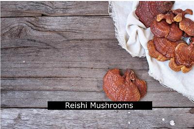 Reishi Mushrooms