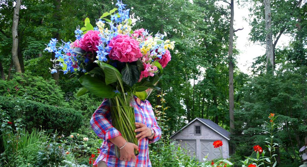 angelica-flowers