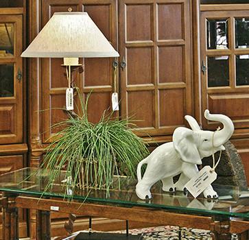 Green plant with Elephant figurine