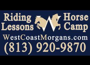West Coast Morgans