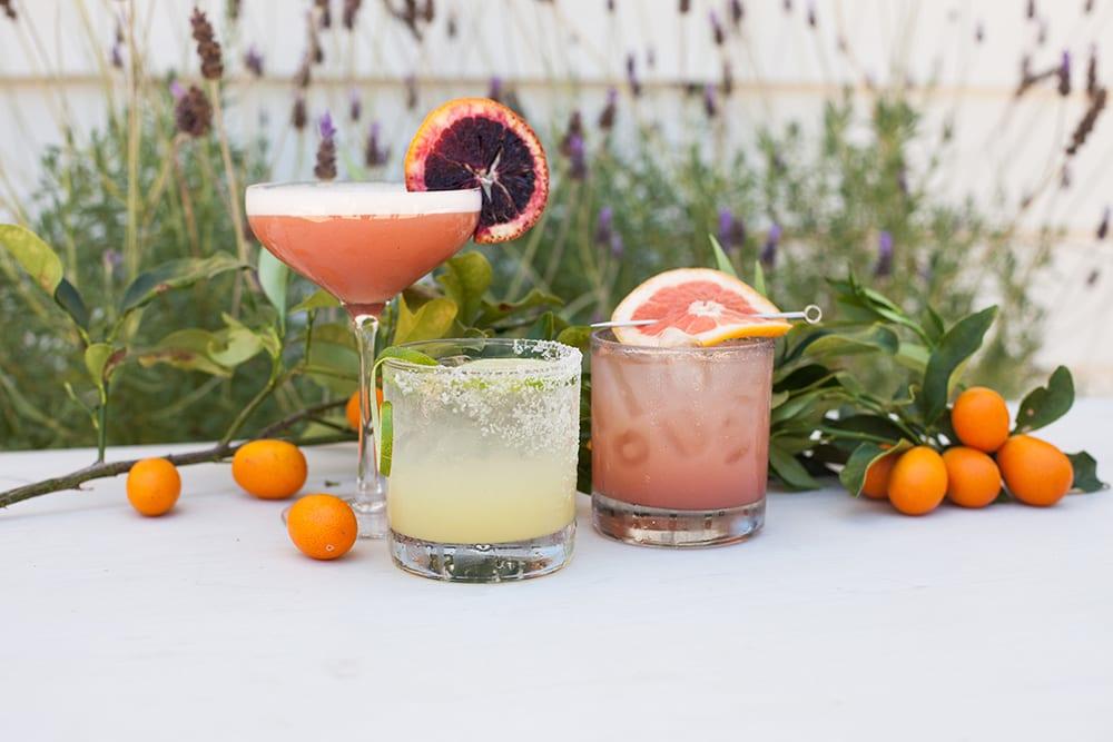craft cocktails with fresh fruit garnishes | snake oil cocktail co.