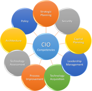 CIO 9 Competencies