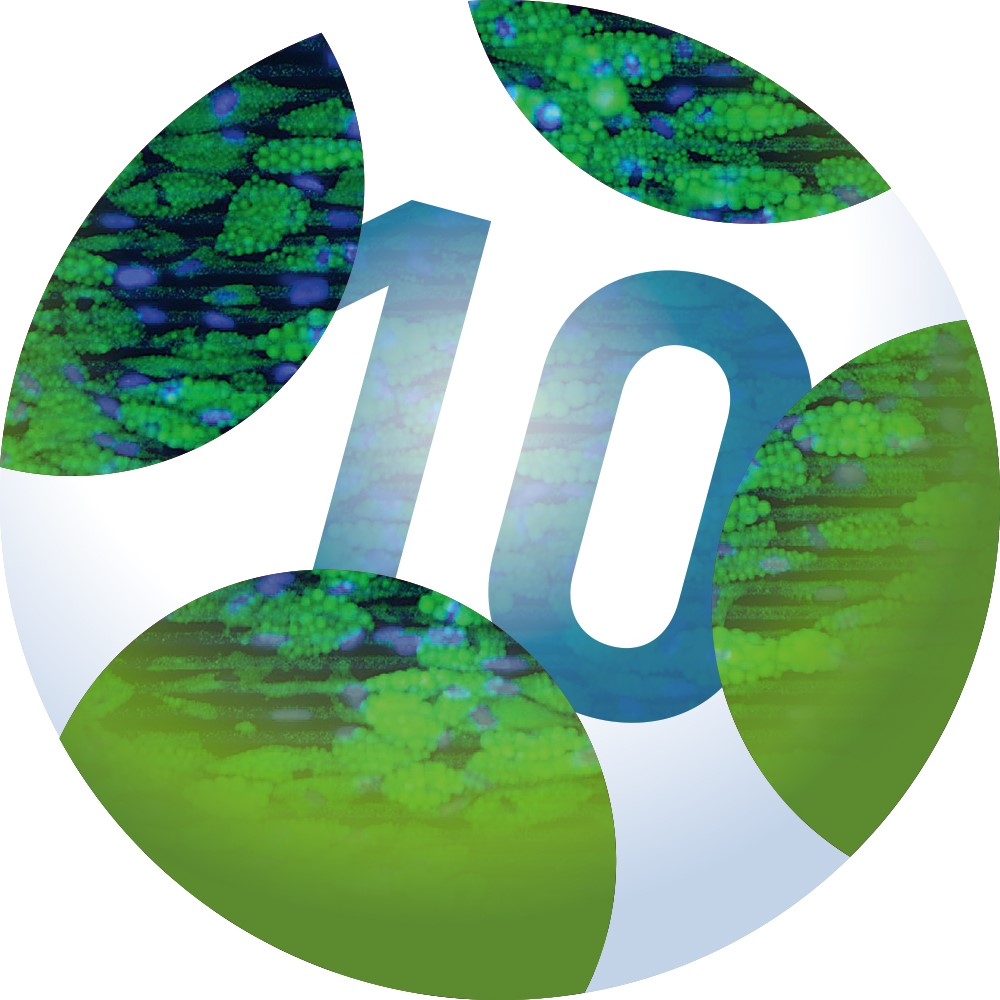 Logo_10th_Int_Meeting