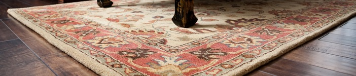 Cleaning your delicate and expensive Oriental/area rugs in New Jersey