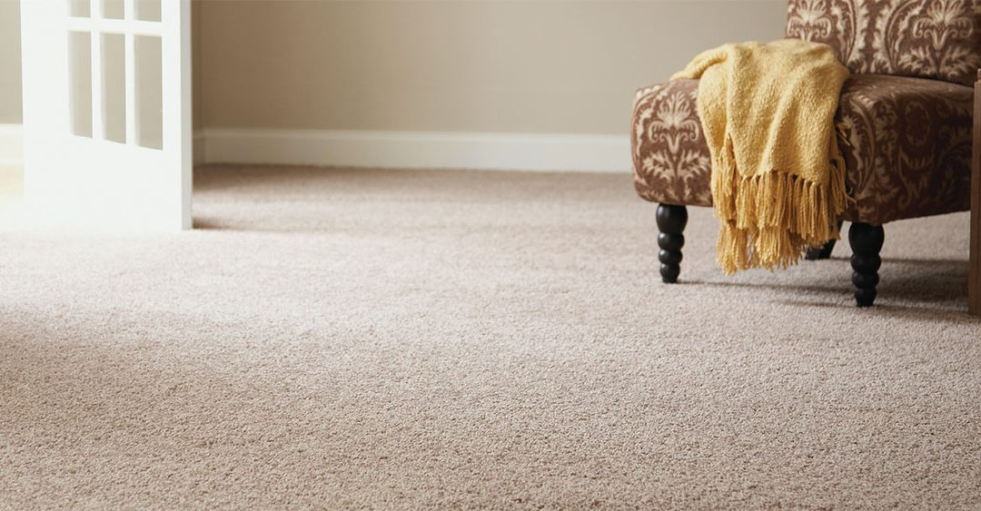 GET YOUR FLOORS CLEANED BY A PROFESSIONAL CARPET CLEANING SERVICE