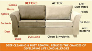 Professional Upholstery Cleaning Services Near Me