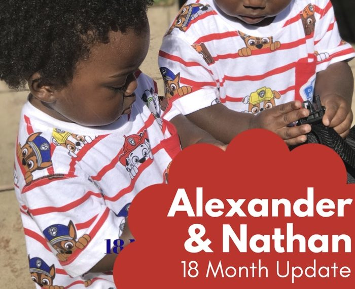 Alexander and Nathan: 18-Month Update