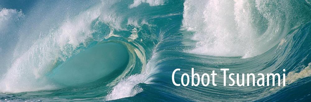 cobot-tsunami