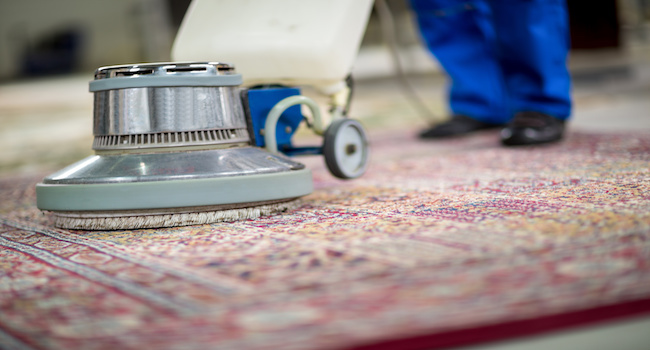 Cleaning Area Rug   Floor Cleaning Services