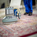 Cleaning Area Rug | Floor Cleaning Services