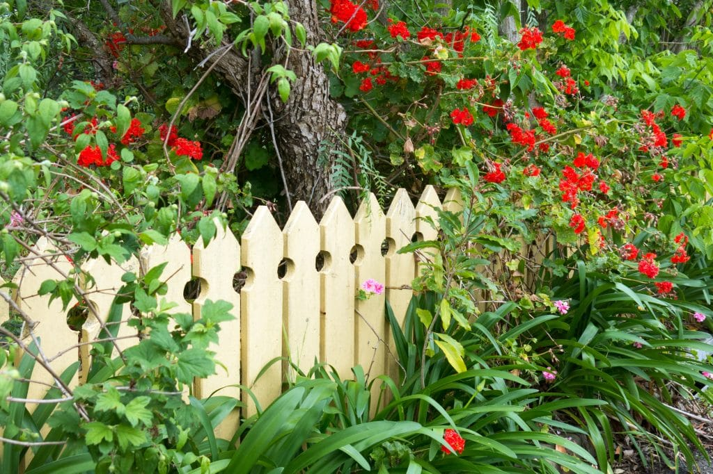 Why You Should Install a Fence Around Your Property