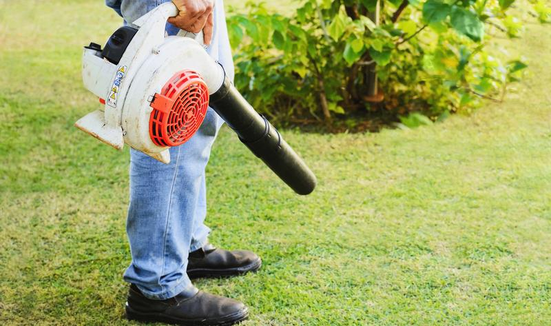 Spring Has Sprung: 6 Areas of Your Yard That Need Maintenance After Winter