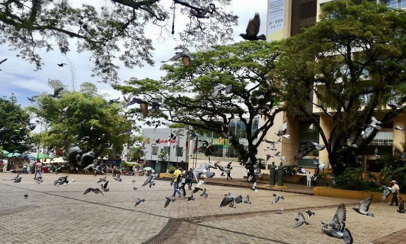 Actividades y planes en Villavicencio1