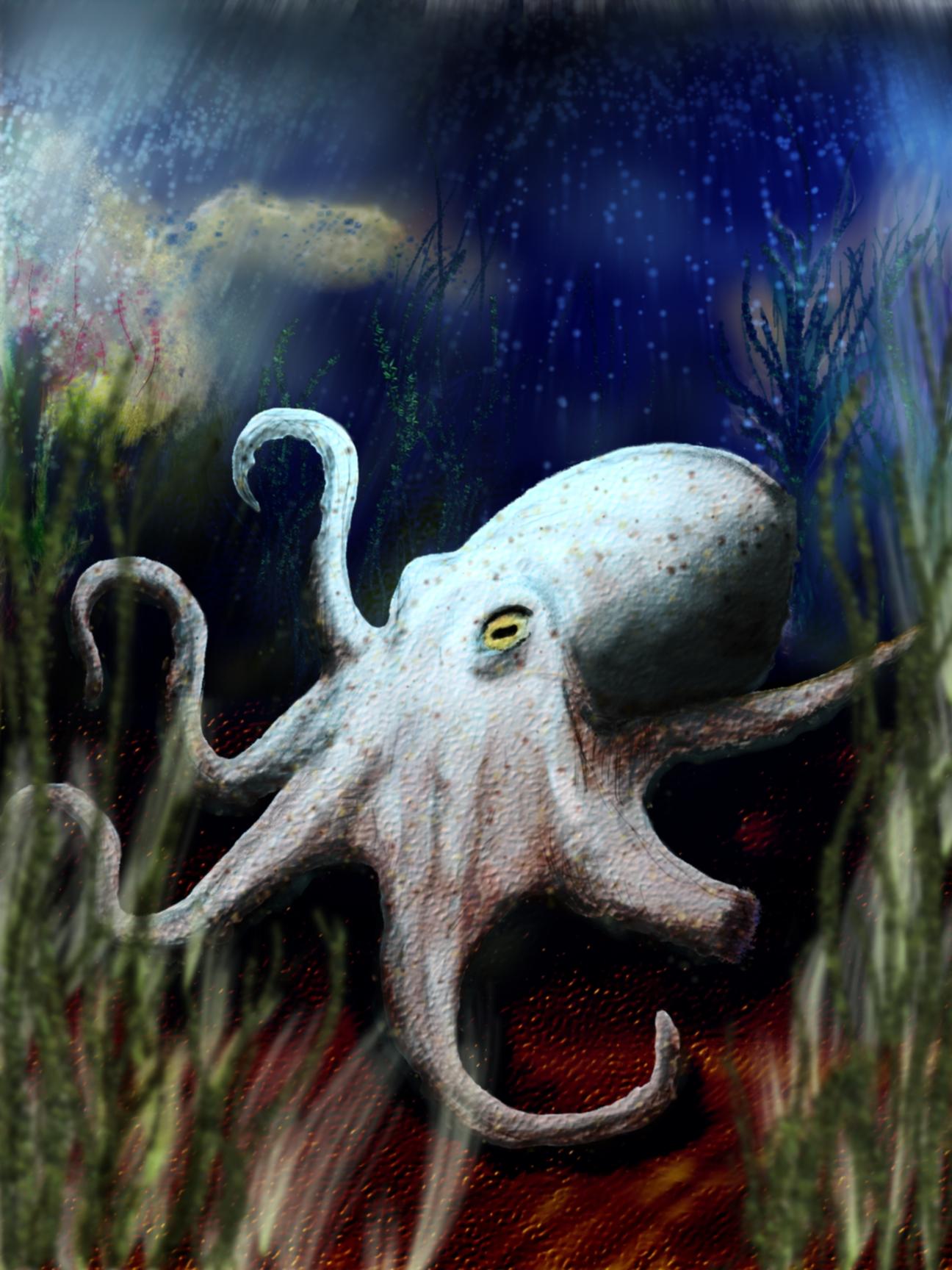 Tedrick Gritswell Octopus Art Progress