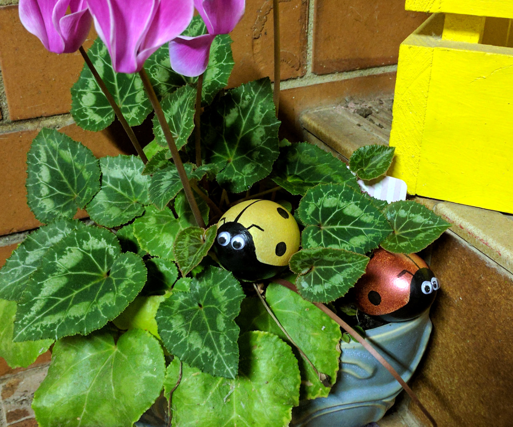 Ladybird Easter Eggs