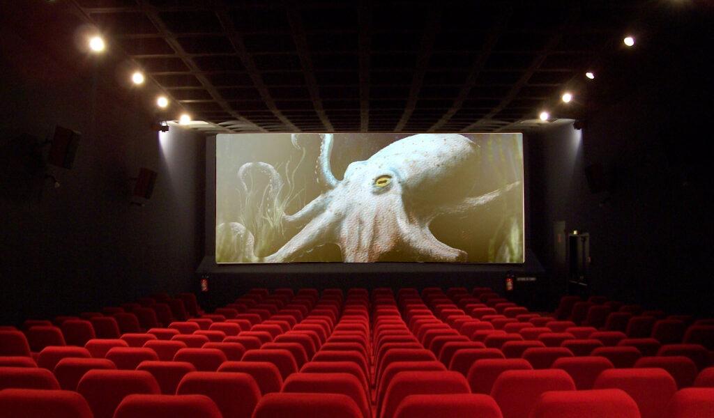 Tedrick Screen Play