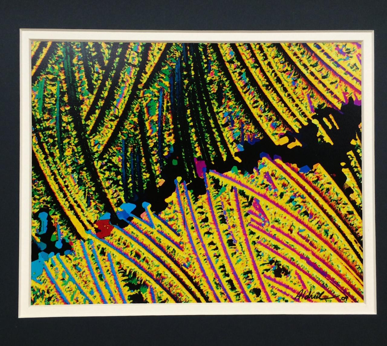 Tapestry by Scott Aldrich