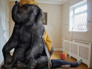 sometimes_when_fred_was_flat_out_doing_housework_he_felt_like_an_elephant_was_sitting_on_his_chest-2