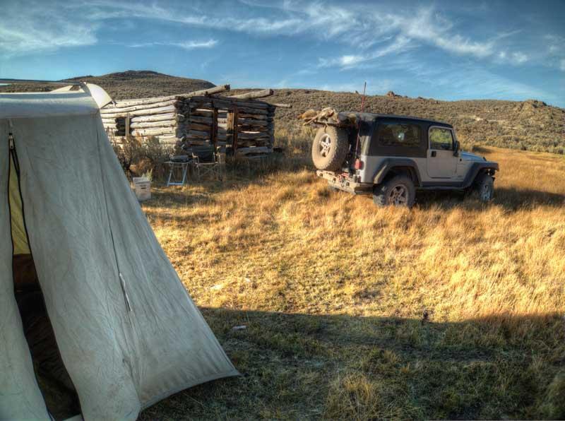 Long abandoned pasture