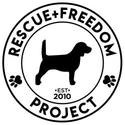 The Brave Files Podcast Charity of the week, Rescue + Freedom Project