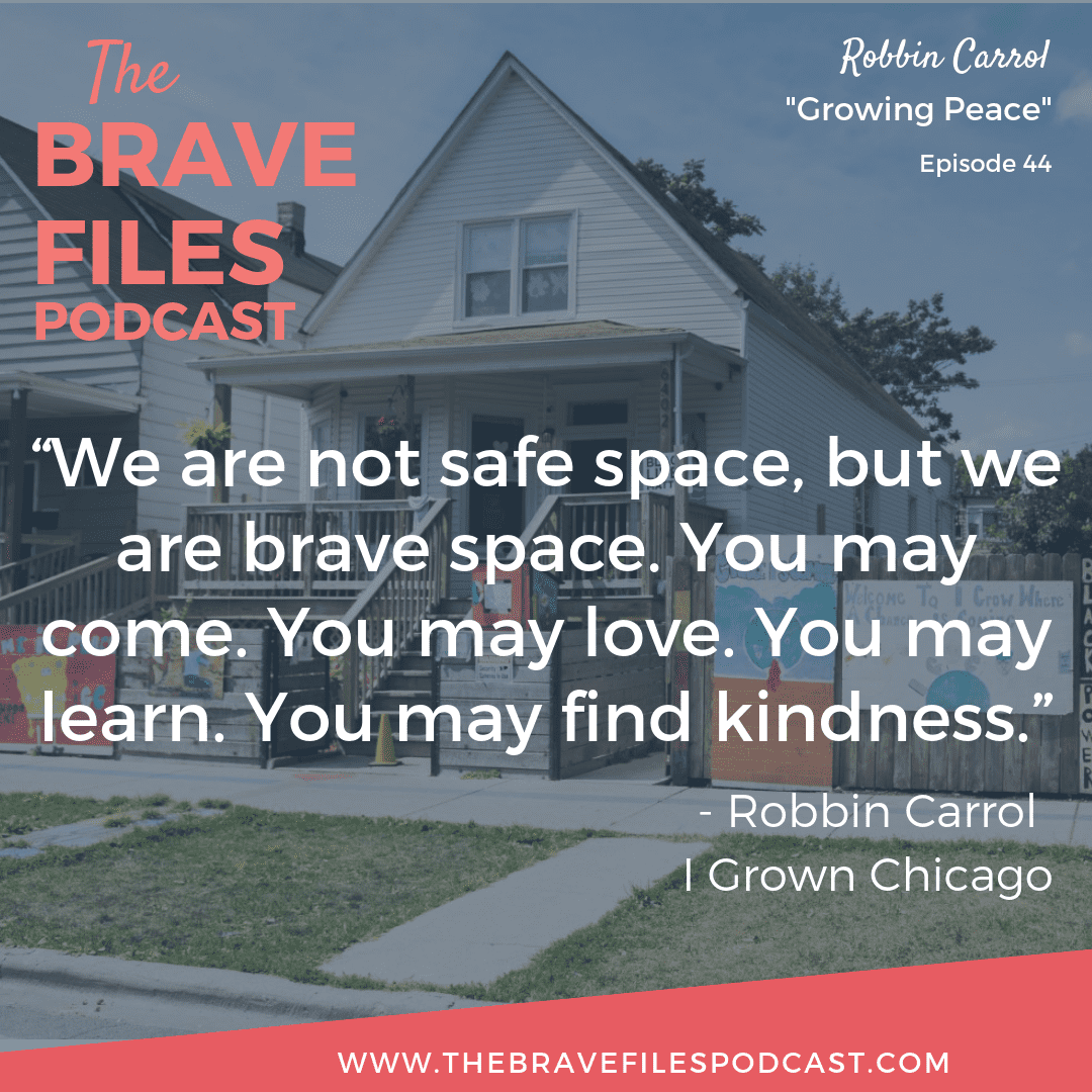 Robbin Carrol helped transform one of Chicago's most dangerous streets into a community of peace, love and acceptance. The Brave Files Podcast.