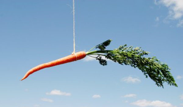 Are You Using Digital Marketing as a Carrot or a Stick?