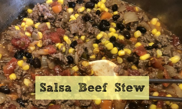 Salsa Beef Stew with Deer Meat