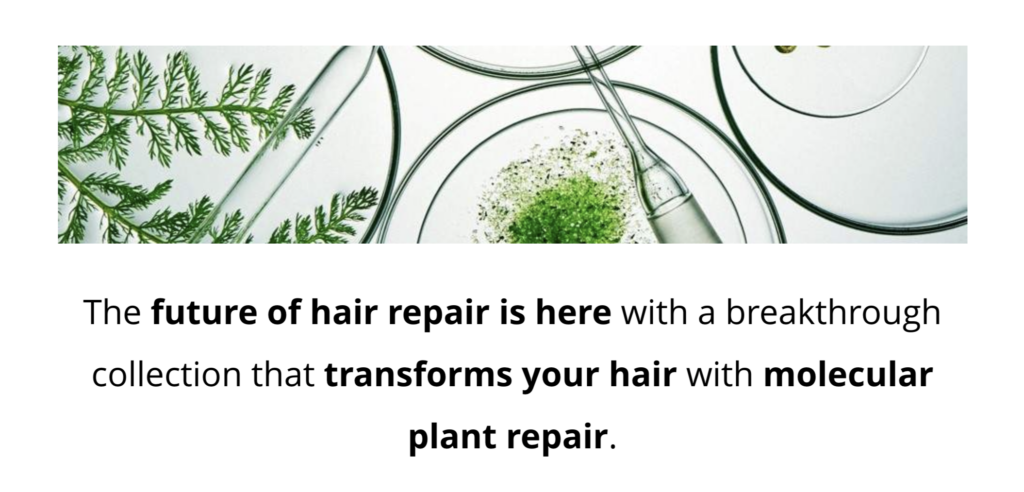 Botanical Repair