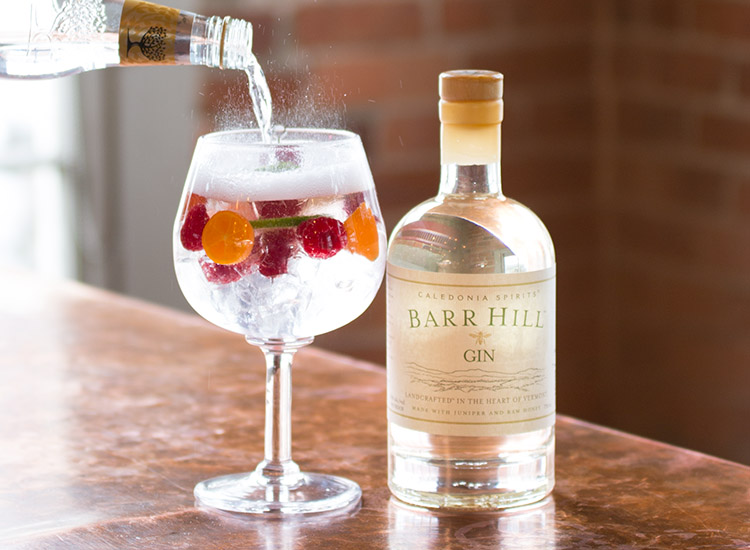 Classic Gin and Tonic