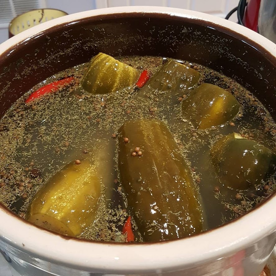 Fermented Pickle 2017
