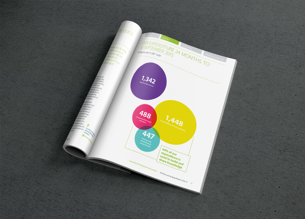 IHA Annual Activity Report