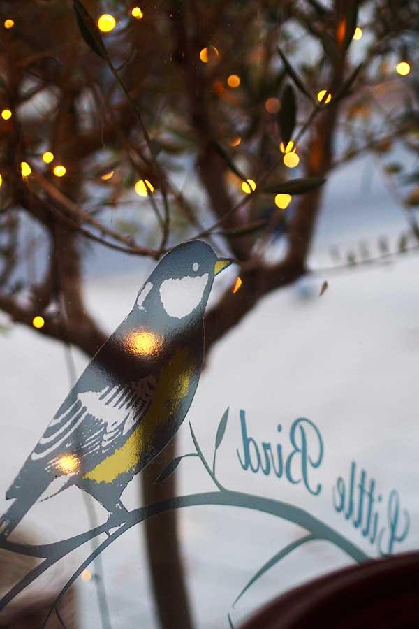 Little Bird Photo 25