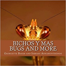 BUGS AND MORE – BICHOS Y MAS