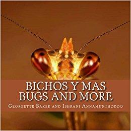 BUGS AND MORE – BICHOS Y MAS