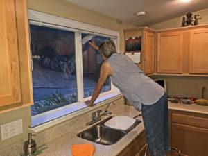 Author, Joan, washing kitchen windows