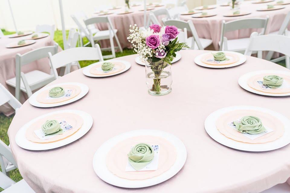 Light Pink Poly Tablecloth with Sage Poly Napkins