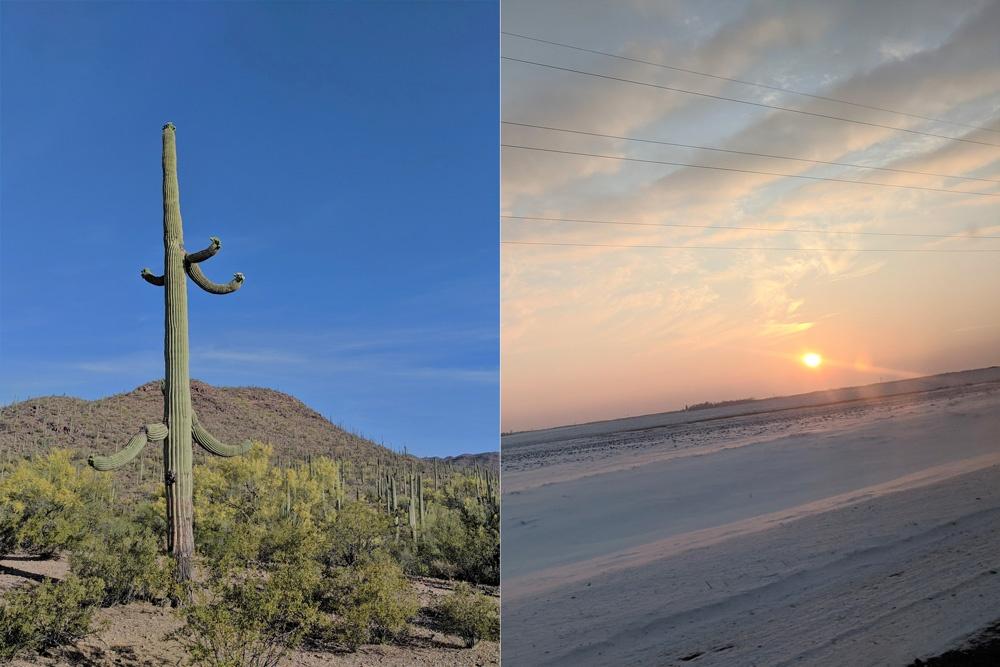 Arizona and Minnesota