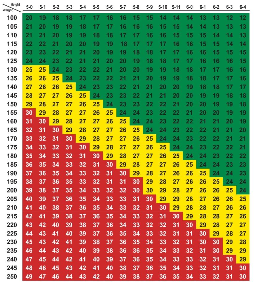 Does This Chart Make Me Look Fat Joya Cousin Fine Art