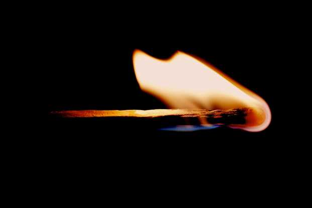 School Blaze - bp coyle