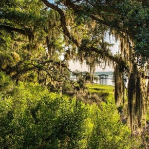 Palmetto Bluff is located on the May River in Bluffton, SC