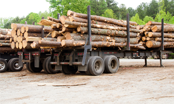 Wheelco Forestry Customers