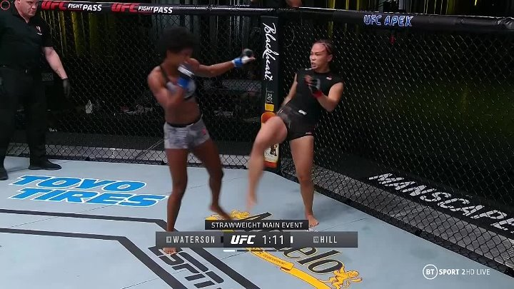 Michelle Waterson vs Angela Hill (UFC FIGHT NIGHT 177)