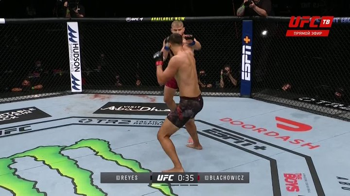 Dominick Reyes vs Jan Błachowicz (UFC 253)