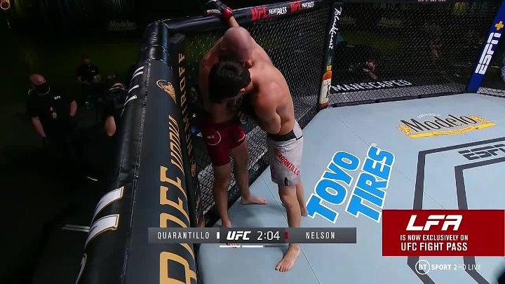 Billy Quarantillo vs Kyle Nelson (UFC FIGHT NIGHT 177)