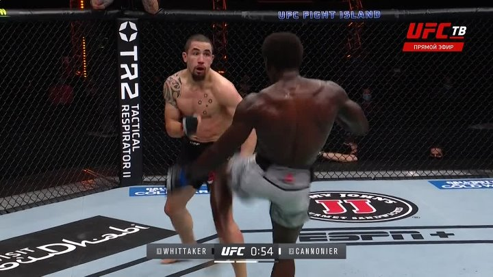 Robert Whittaker vs Jared Cannonier (UFC 254)
