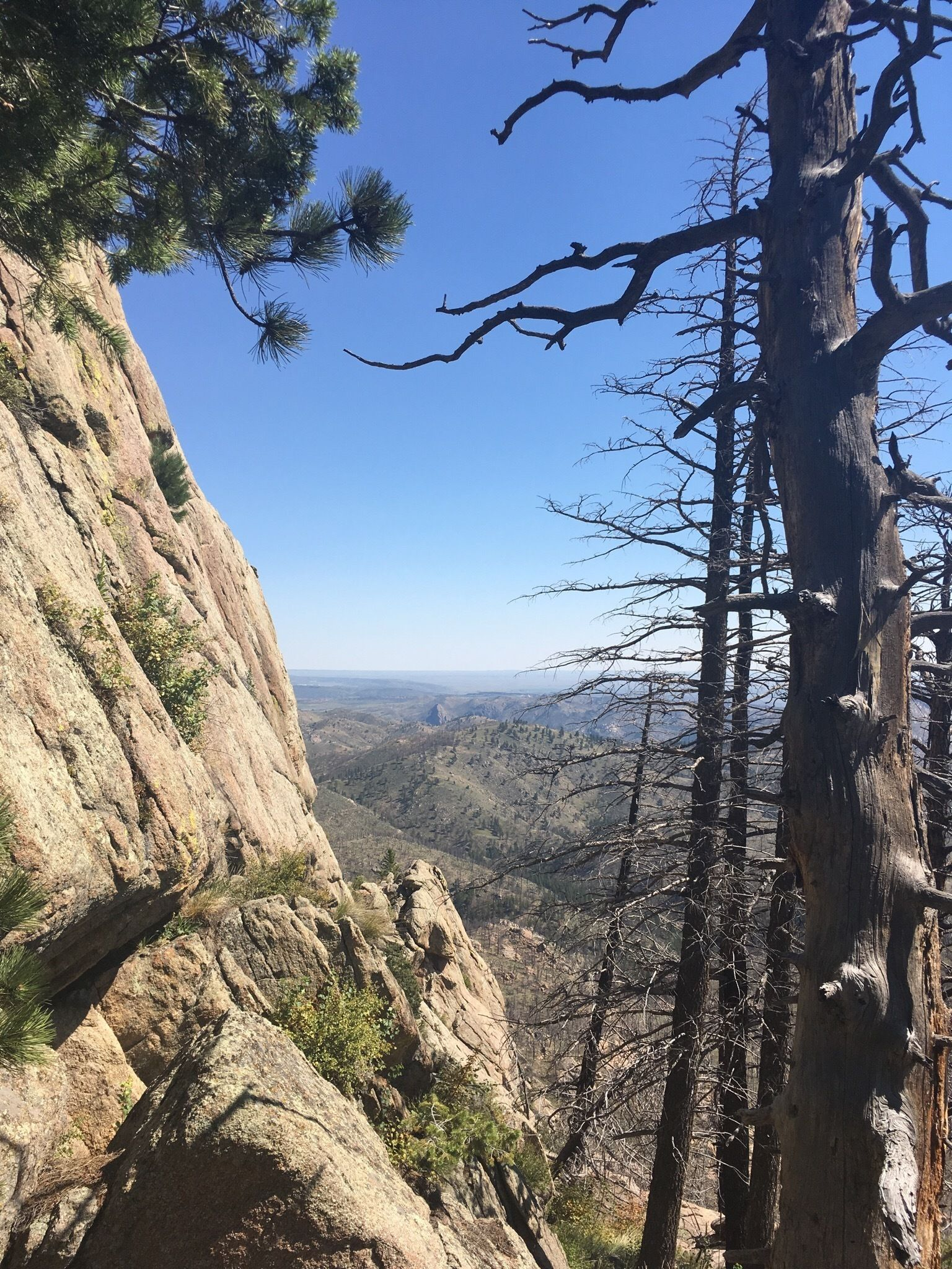greyrock summit trail