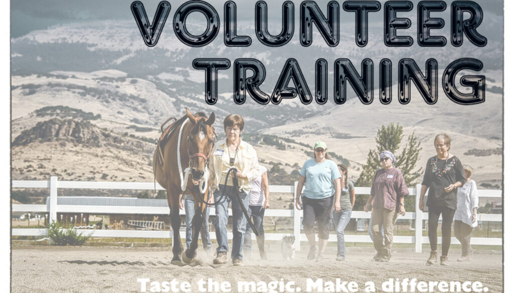 Volunteer Training March 8, 2016