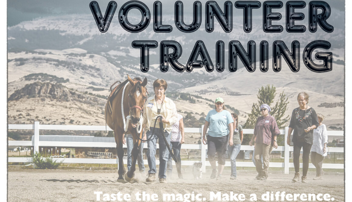 Volunteer Training March 8, 2016